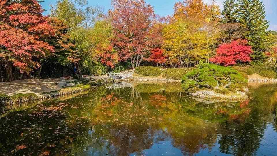 Güney Kore park
