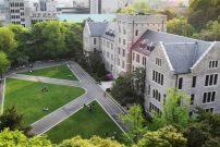 Kore'de hangi üniversiteye gidilir