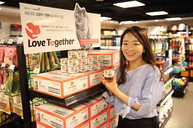 Kore evcil hayvan kültürü